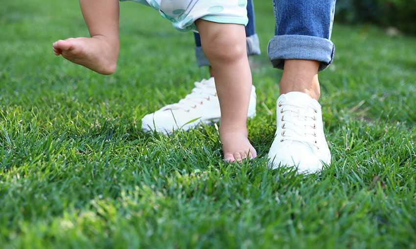 Gdje kupiti umjetnu travu?
